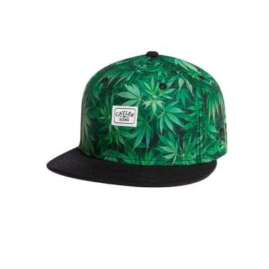 2 Tone Lift Cap - Green/Black