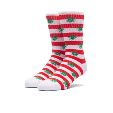 Plantlife Candy Cane Sock - Red